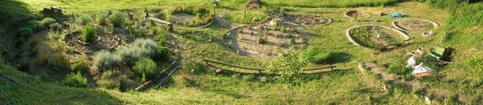 Cultivare Mandala