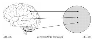 Modelul unificator al psihicului uman