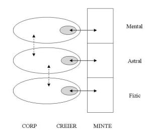 reprezentarea schematica dintre corpuri