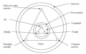 Psihicul si creierul uman din perspectiva ezoterica (III)