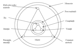 schema simplificata a psihicului