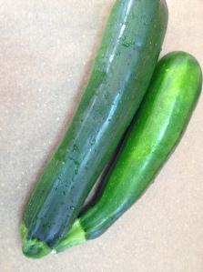 zucchini bio